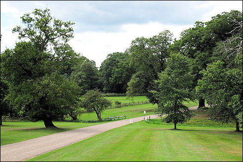 Windsor Great Park
